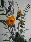 zolte kwiatki